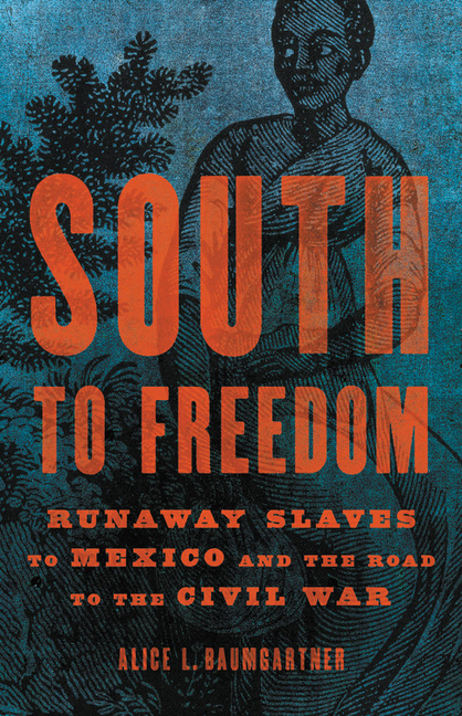 South to Freedom: Runaway Slaves to Mexico and the Road to the Civil War. Alice L. Baumgartner