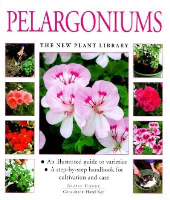 Pelargoniums (New Plant Library). Blaise Cooke