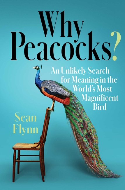 Why Peacocks?: An Unlikely Search for Meaning in the World's Most Magnificent Bird. Sean Flynn