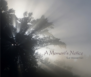 Sue Wasserman | A MOMENT'S NOTICE