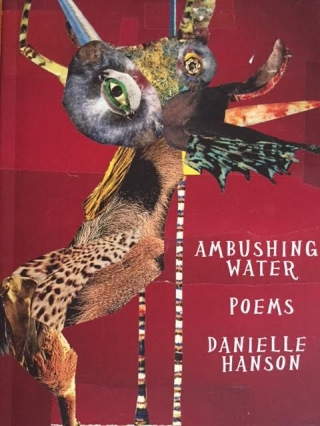 Poetry with Danielle Hanson | AMBUSHING WATER
